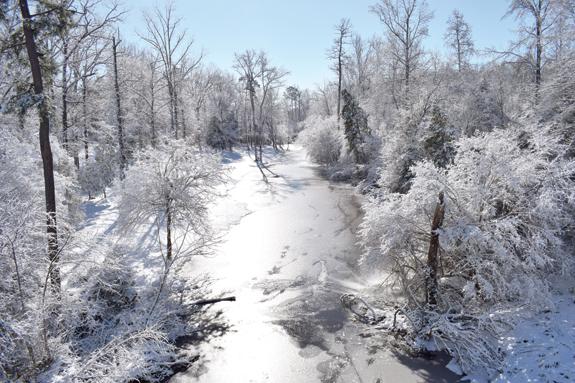 <i>Winter wonderland</i>