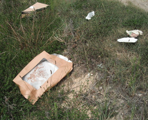<i>DOT stops inmate litter pickup; now it's up to us</i>