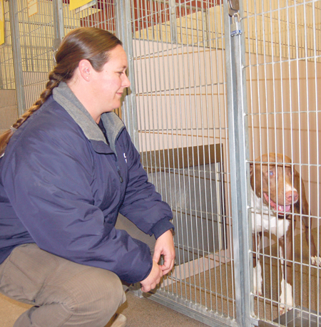 Animal rescuers request additional help at shelter