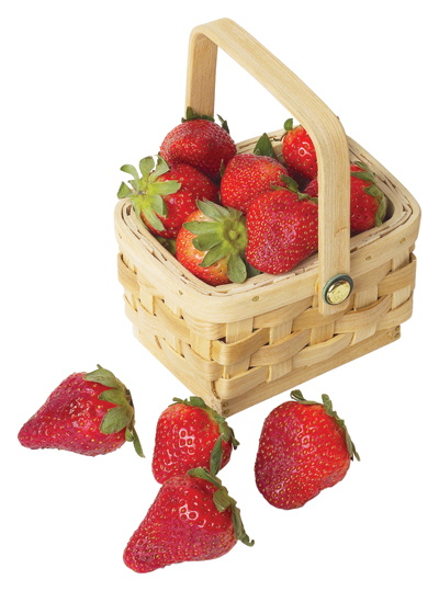 <i>Strawberry Festival planned for May 5</i>