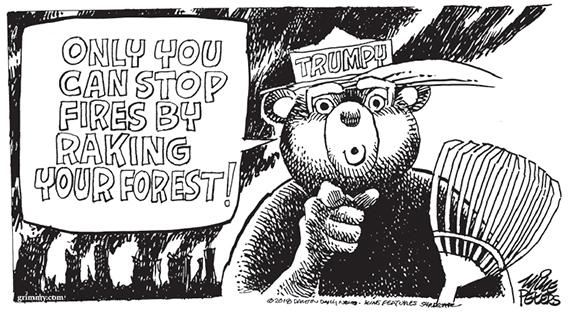 Editorial Cartoon: Trump Rake